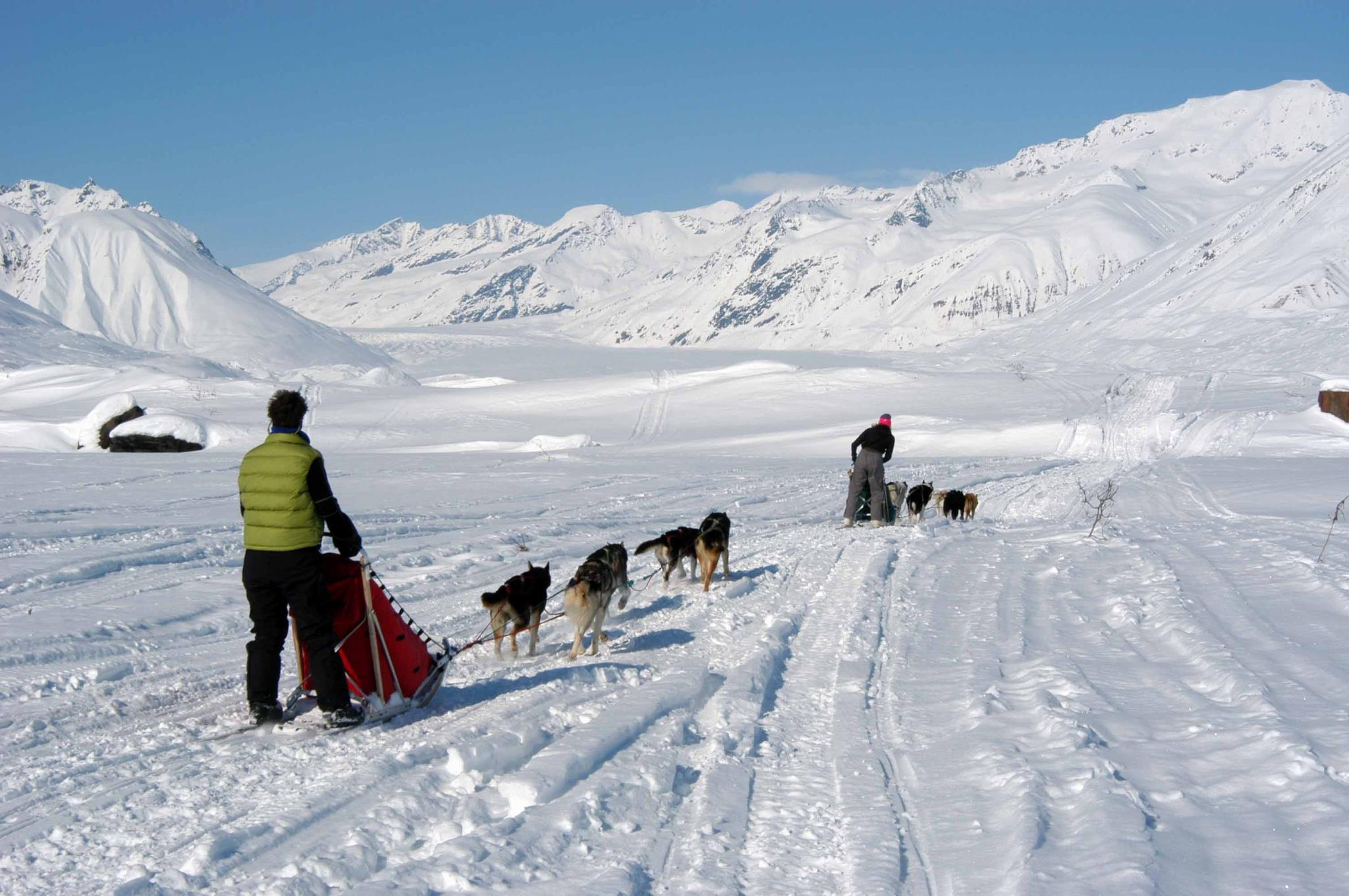 dog sled three day overnight tour paws for adventure