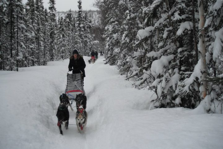 guests-on-snowy-trail-2012